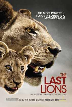 Son Aslanlar – The Last Lions Türkçe Dublaj indir   DUAL   2011